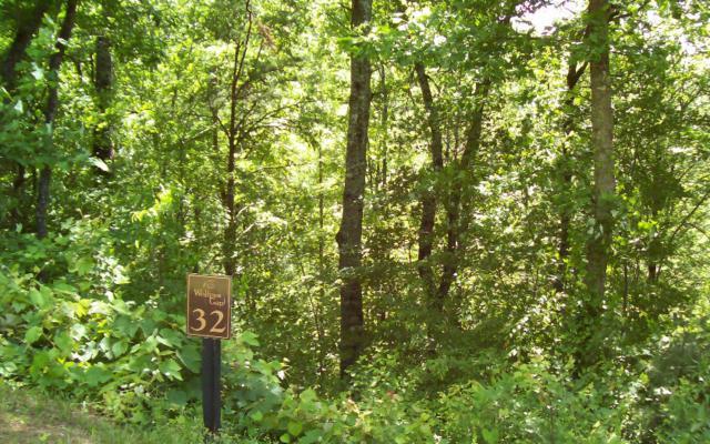 31&32 Wolfpen Gap, Hiawassee, GA 30546 (MLS #258956) :: RE/MAX Town & Country