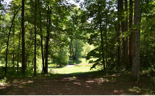 36LOT Walnut Drive, Hayesville, NC 28904 (MLS #259946) :: RE/MAX Town & Country