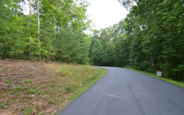 LT 24 Enchanted Woods, Blairsville, GA 30512 (MLS #260038) :: RE/MAX Town & Country