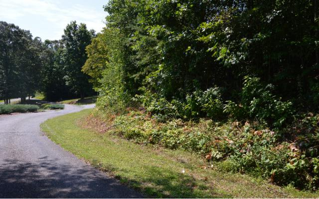 Brer Fox Ridge Lot 4, Hiawassee, GA 34997 (MLS #260277) :: RE/MAX Town & Country