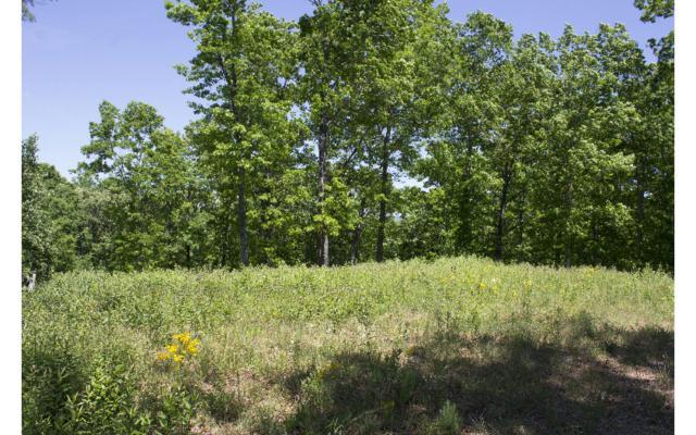215 Cherokee Circle, Murphy, NC 28906 (MLS #260438) :: RE/MAX Town & Country