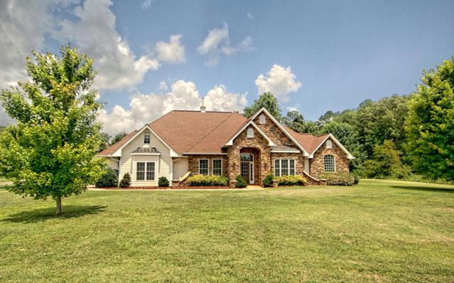 65 Hidden Fields Rd, Hiawassee, GA 30546 (MLS #260467) :: RE/MAX Town & Country