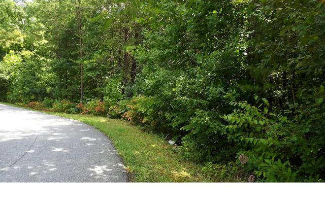 LOT 8 Gladson Settlement, Blairsville, GA 30512 (MLS #260941) :: RE/MAX Town & Country