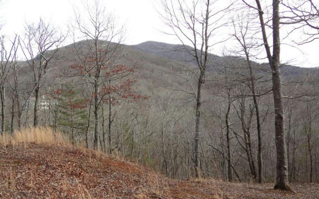 LOT10 Mountain Valley View, Hiawassee, GA 30546 (MLS #261629) :: RE/MAX Town & Country