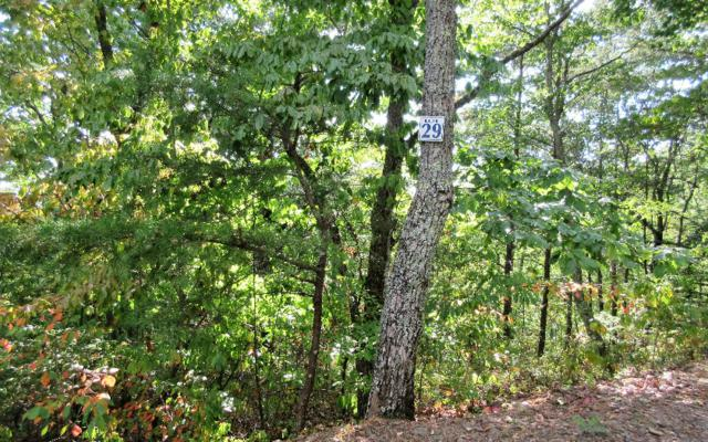 LOT29 Mission Ridge Over., Hayesville, NC 28904 (MLS #261711) :: RE/MAX Town & Country