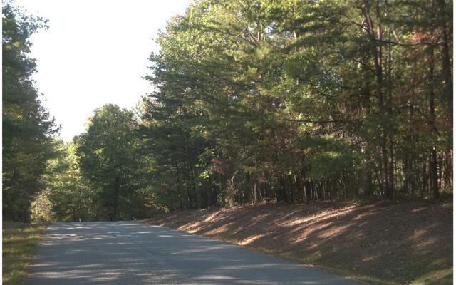 LOT 5 Lori Lane, Blairsville, GA 30512 (MLS #262511) :: RE/MAX Town & Country