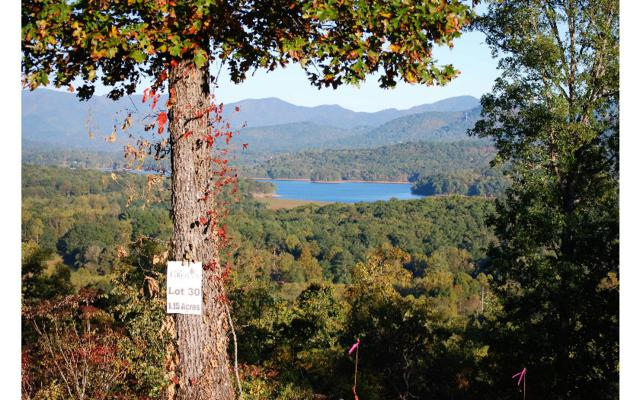 LT30 Jack Groves Lane, Hayesville, NC 28904 (MLS #262598) :: RE/MAX Town & Country