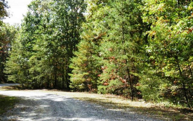L352 Blue Cloud Trails, Morganton, GA 30560 (MLS #262776) :: RE/MAX Town & Country