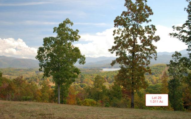 LT29 Jack Groves Lane, Hayesville, NC 28904 (MLS #262870) :: RE/MAX Town & Country