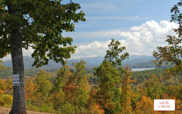 LT25 Jack Groves Lane, Hayesville, NC 28904 (MLS #262874) :: RE/MAX Town & Country