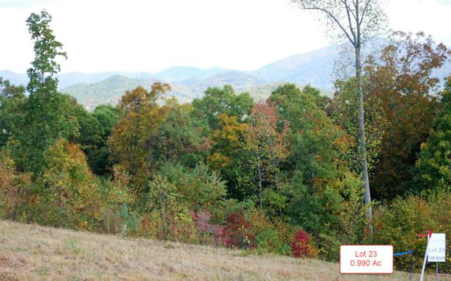 LT23 Jack Groves Lane, Hayesville, NC 28904 (MLS #262876) :: RE/MAX Town & Country