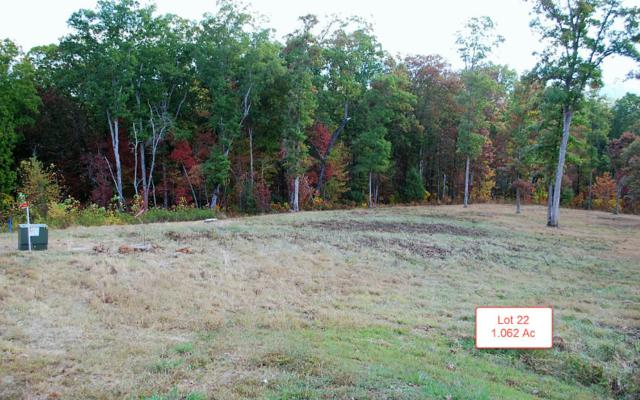 LT22 Jack Groves Lane, Hayesville, NC 28904 (MLS #262877) :: RE/MAX Town & Country