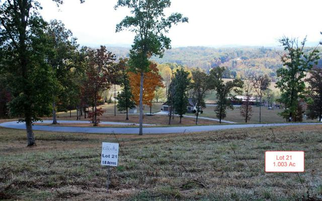 LT21 Jack Groves Lane, Hayesville, NC 28904 (MLS #262879) :: RE/MAX Town & Country