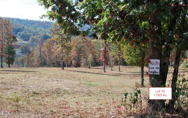LT16 Jack Groves Lane, Hayesville, NC 28904 (MLS #262883) :: RE/MAX Town & Country