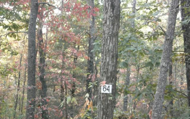 LT 64 Forest Service Rd, Blairsville, GA 30512 (MLS #262916) :: RE/MAX Town & Country