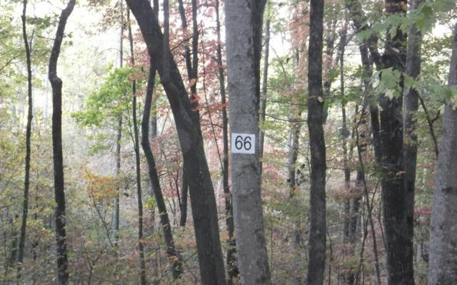 LT 66 Forest Service Rd, Blairsville, GA 30512 (MLS #262917) :: RE/MAX Town & Country
