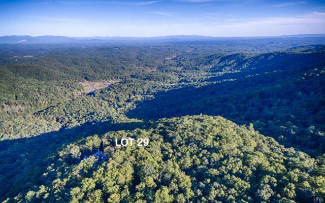 LT29 Utana Bluffs, Ellijay, GA 30540 (MLS #263021) :: RE/MAX Town & Country