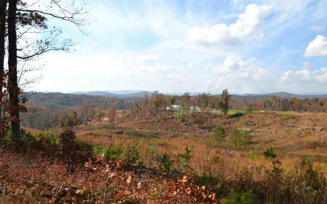 LT189 Old Toccoa Farm, Mineral Bluff, GA 30559 (MLS #263206) :: RE/MAX Town & Country