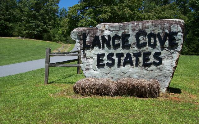 28 Coyote Cove, Hayesville, NC 28904 (MLS #263448) :: RE/MAX Town & Country