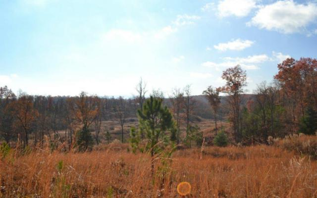 LT171 Old Toccoa Farm, Mineral Bluff, GA 30559 (MLS #263590) :: RE/MAX Town & Country