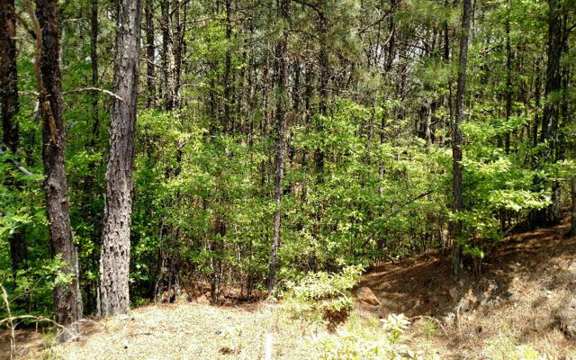 L-32 Highland Woods, Copperhill, TN 37317 (MLS #264297) :: RE/MAX Town & Country