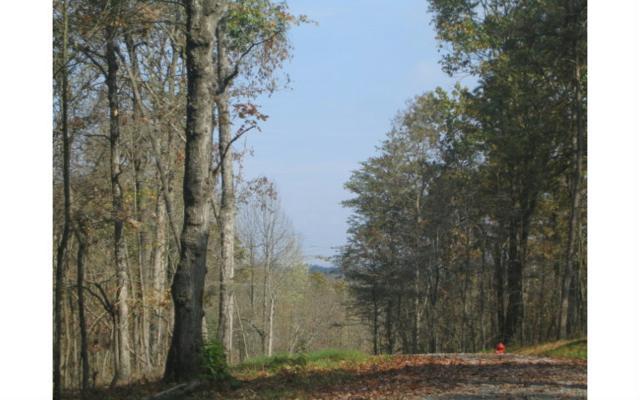 LT11 Toccoa Preserve, Blue Ridge, GA 30513 (MLS #264350) :: RE/MAX Town & Country