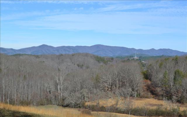 Brookhaven, McCaysville, GA 30555 (MLS #264890) :: RE/MAX Town & Country