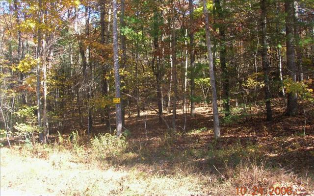 LOT 3 Peter Knob, Blue Ridge, GA 30513 (MLS #265578) :: RE/MAX Town & Country