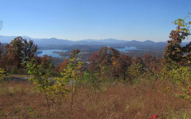 LOT45 Lot 45-M Pinnacle Dr, Hayesville, NC 28904 (MLS #265640) :: Path & Post Real Estate
