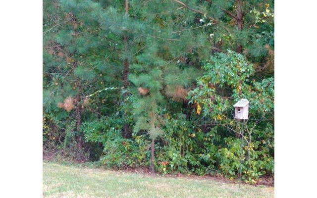 116R Mountain Creek, Talking Rock, GA 30175 (MLS #265970) :: RE/MAX Town & Country