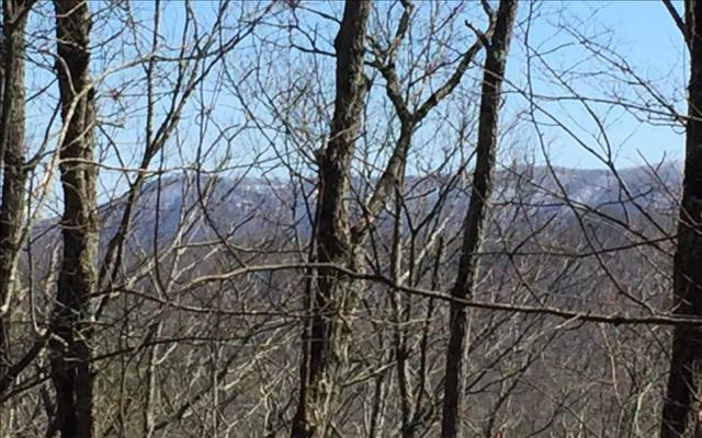 LT 11 Chestnut Overlook, Blue Ridge, GA 30513 (MLS #266104) :: RE/MAX Town & Country