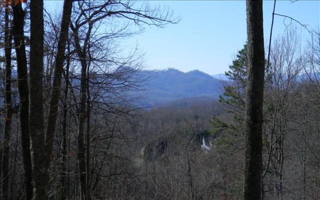 44C Ashe Branch Circle, Hayesville, NC 28904 (MLS #266265) :: RE/MAX Town & Country