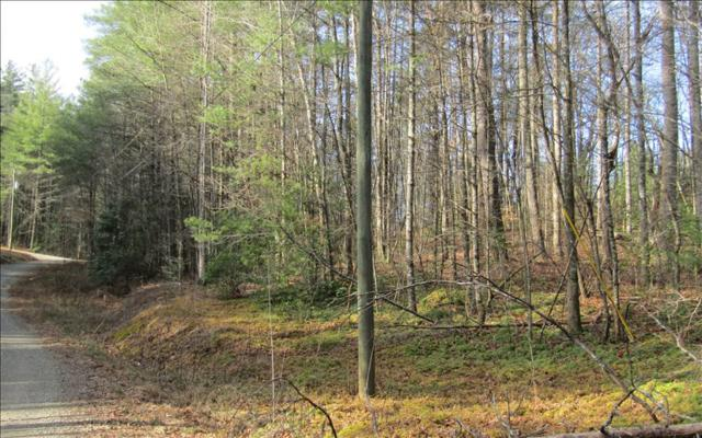 Westwind Dr, Ellijay, GA 30540 (MLS #266307) :: RE/MAX Town & Country
