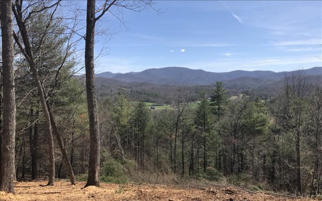 LT 12 Self Mountain, Blairsville, GA 30512 (MLS #266643) :: RE/MAX Town & Country