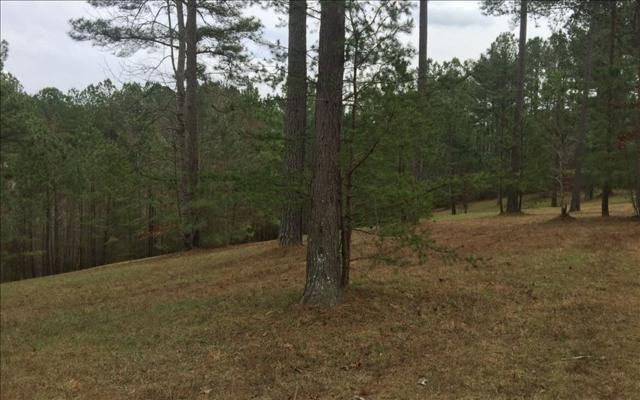 LT 49 The Sanctuary, Blairsville, GA 30512 (MLS #266646) :: RE/MAX Town & Country