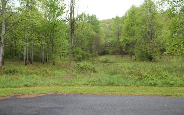 63C Ashe Branch Circle, Hayesville, NC 28904 (MLS #267047) :: RE/MAX Town & Country
