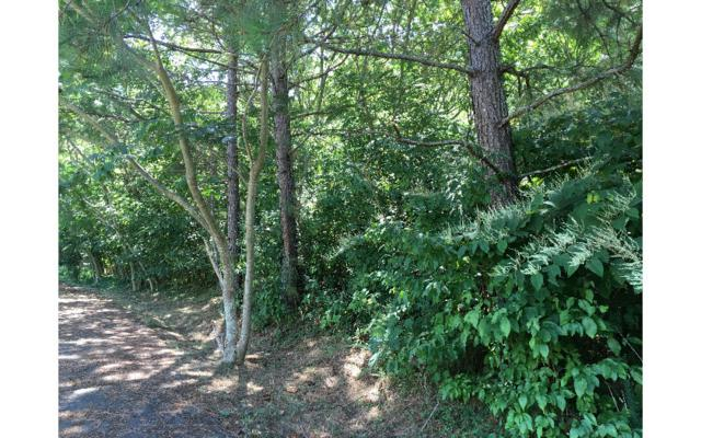 .96AC Kimberly Drive, McCaysville, GA 30555 (MLS #267123) :: RE/MAX Town & Country