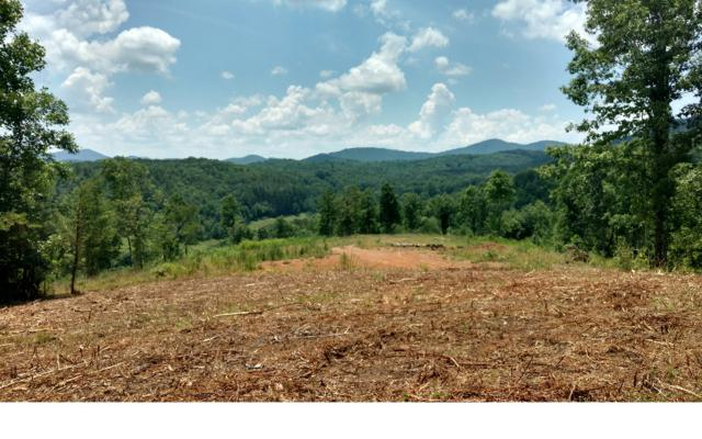 LT109 Brasstown Ridge, Brasstown, NC 28902 (MLS #267287) :: RE/MAX Town & Country