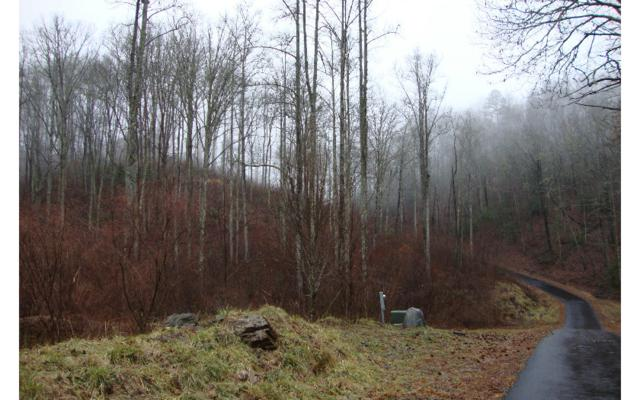 LT 92 Five Forks, Murphy, NC 28906 (MLS #267291) :: RE/MAX Town & Country