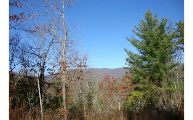 LT 8 Our Hidden Mountain, Murphy, NC 28906 (MLS #267368) :: RE/MAX Town & Country
