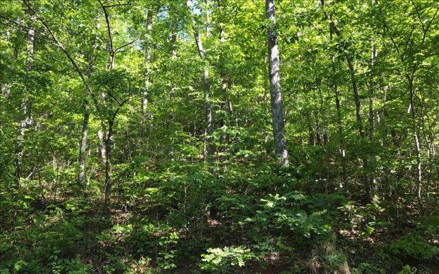 LT 4 Woods Of Hunter, Hayesville, NC 28904 (MLS #267429) :: RE/MAX Town & Country