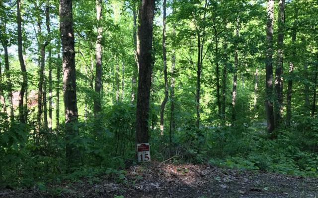 LT 15 Woods Of Hunter, Hayesville, NC 28904 (MLS #267433) :: RE/MAX Town & Country