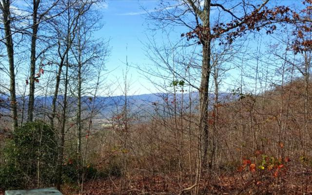 LT 16 Double Knobs, Hayesville, NC 28904 (MLS #267488) :: RE/MAX Town & Country