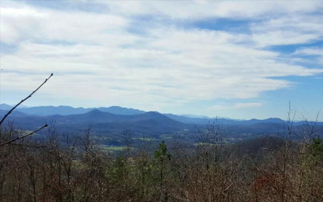 LT 17 Double Knobs, Hayesville, NC 28904 (MLS #267490) :: RE/MAX Town & Country