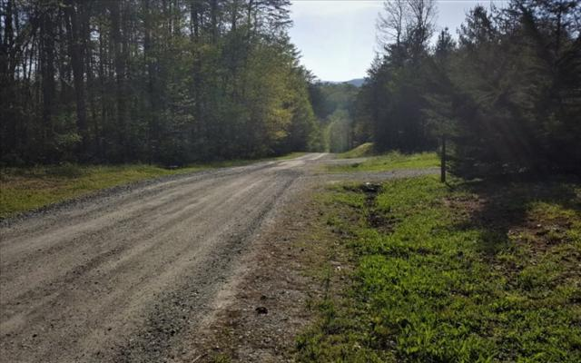 LOT Sunset Trail, Epworth, GA 30541 (MLS #267605) :: RE/MAX Town & Country