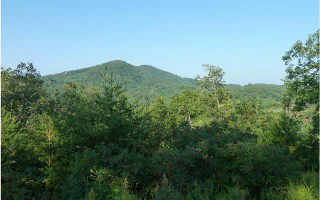54 Brasstown View Road, Murphy, NC 28906 (MLS #267608) :: RE/MAX Town & Country