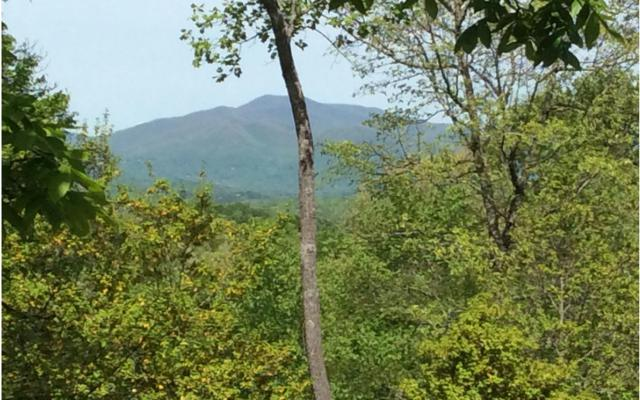 LT 35 Holly Berry Hills, Hayesville, NC 28904 (MLS #267644) :: RE/MAX Town & Country