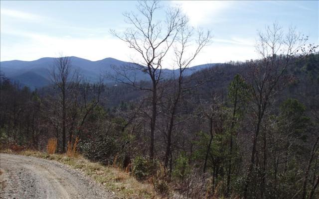 LOT 1 Brian Bluff Trail, Hiawassee, GA 30546 (MLS #267711) :: RE/MAX Town & Country