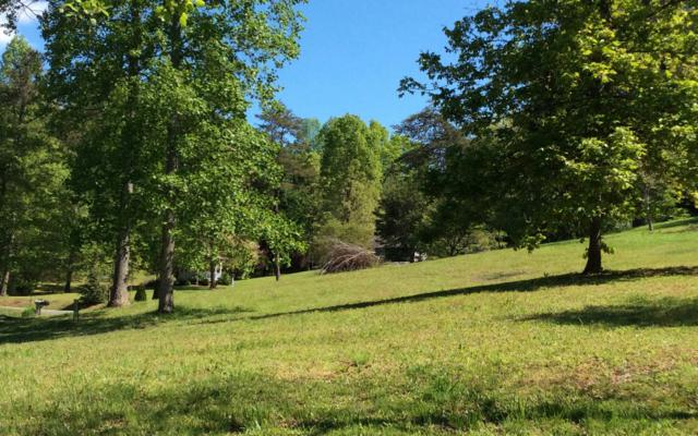 15 A Deerbrook Rd, Hayesville, NC 28904 (MLS #267889) :: RE/MAX Town & Country
