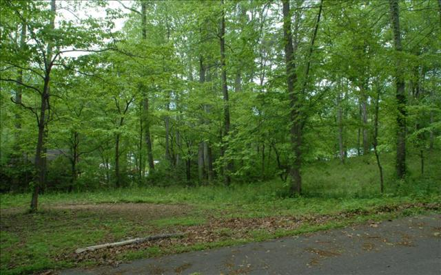Chatuge Cove Drive, Hayesville, NC 28904 (MLS #268082) :: RE/MAX Town & Country